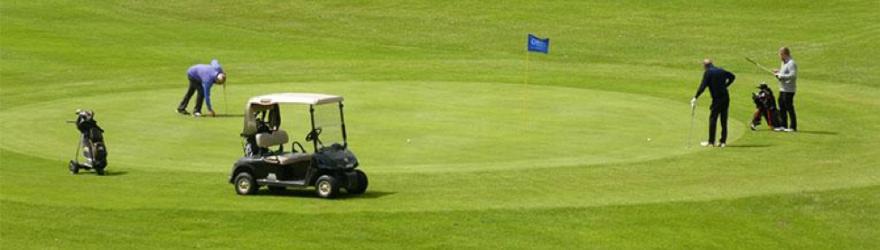golfers on the green with carts
